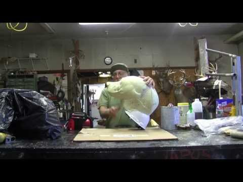 Testas Tuesday Tips – Customizing a foam head for a Taxidermy Bear Puppet