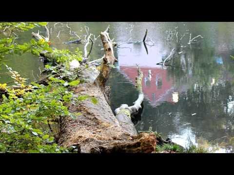 MAFIA / A. PIASECZNY - Okruchy z jesieni (audio)