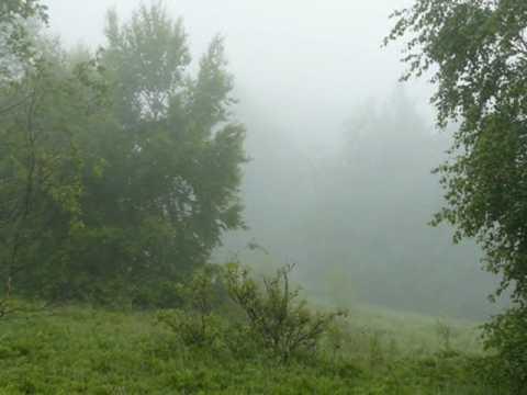 STARE DOBRE MAŁŻEŃSTWO - Dookoła mgła (audio)