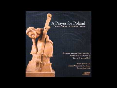 Trio for Violin, Cello and Piano in G minor, Op. 8: I. Allegro con fuoco