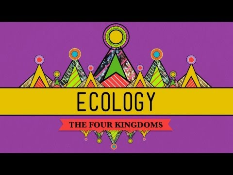 Ecology – Rules for Living on Earth: Crash Course Biology #40