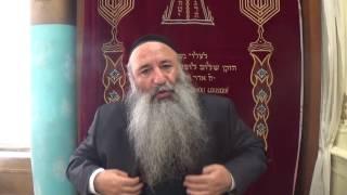 N°69 (1) La biographie de notre luminaire Rabbi Chimon Bar Yohaï , ses épreuves , sa grandeur dans l