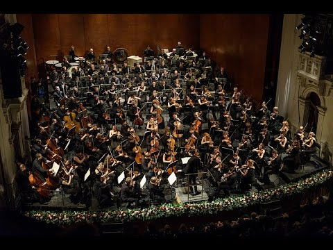 DF Live: Concert of the Festival Orchestra