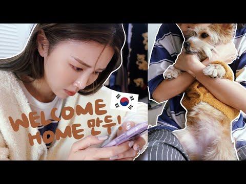 [宅韓國VLOG] 居家隔離DONE!!我們做的第1件事!! 大噴淚⋯跟狗狗分開接近2個月만두終於回家了!!|Lizzy Daily