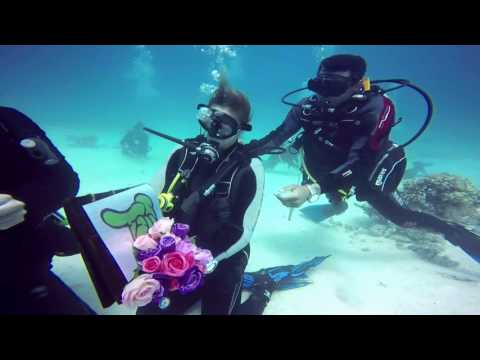 underwater proposal  marsa alam red sea Egypt_Diving destinations. Best of the week