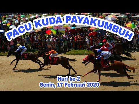 Pacu Kuda Payakumbuh 2020 Hari Kedua, Raja Tanpa Nama Tampil Memukau Penonton