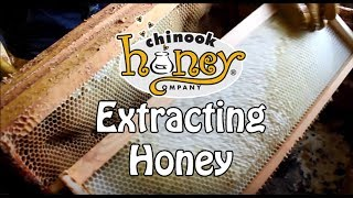 Extracting Chinook Honey (2016)