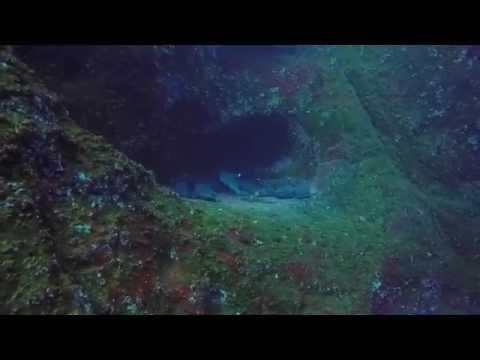 Buceo Islas Revillagigedo, M�xico