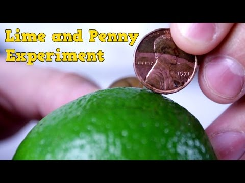 Lime and Penny Experiment