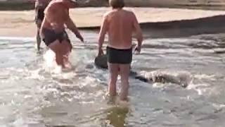 Ловля сома - как поймали сома 90 кг на спиннинг