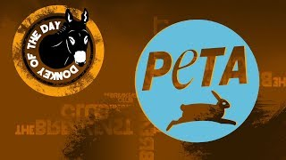 Video PETA Wants You To Stop Using 'Anti-Animal' Phrases MP3, 3GP, MP4, WEBM, AVI, FLV Desember 2018