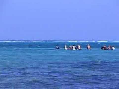 Cayman Horseback riding