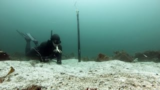 Freediving Norway - Gopro with external flaslight. Video