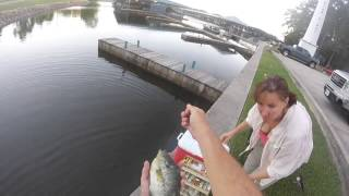 Conroe (TX) United States  city images : Good Day Fishing Lake Conroe Texas