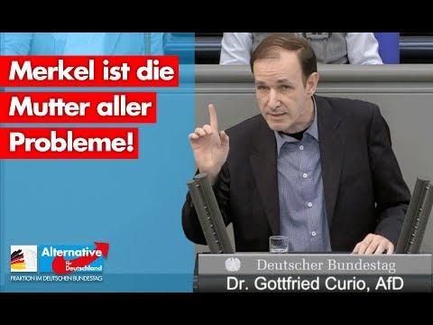 Wieder klare und deutliche Worte des AfD-Abgeordneten im Bundestag Curio: Was ist das für ein Staat!