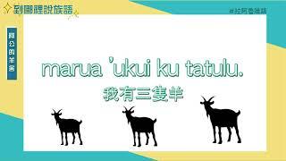 01-臺北市母語巢-到哪裡說族語-拉阿魯哇語-阿公的羊舍