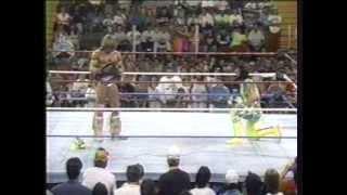 Video Ultimate Warrior vs. Randy Savage drama, WWF 1992 MP3, 3GP, MP4, WEBM, AVI, FLV Juni 2018