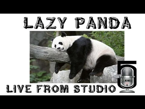 lazy panda - Lazy Panda performed