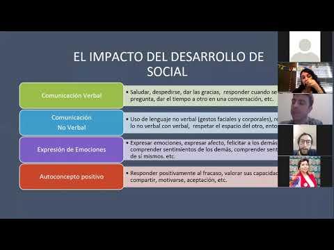 2da jornada de entrenamiento como coterapeutas   Agrupación TEAbrazo   Puerto Varas