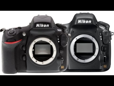 Nikon D800 vs D800E - which is best for you?
