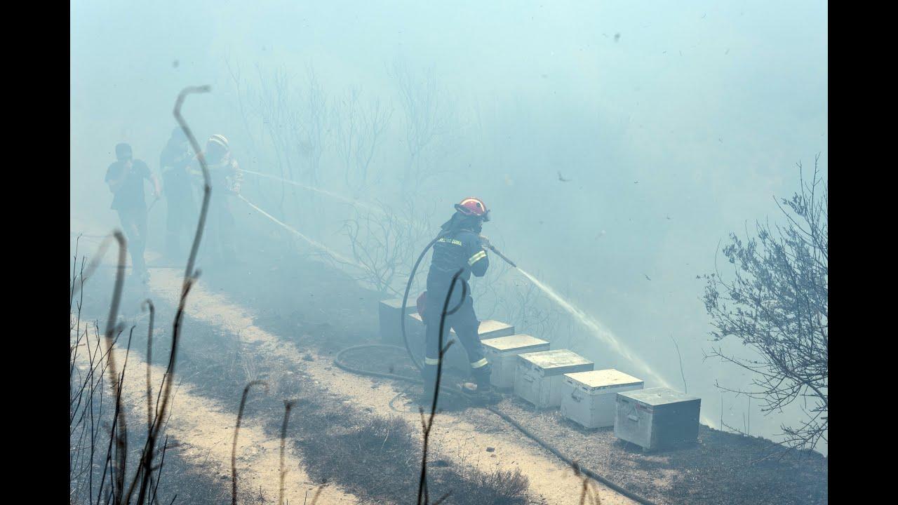 Φωτιά στην Εύβοια: Μία σύλληψη – Σε εξέλιξη η επιχείρηση κατάσβεσης…