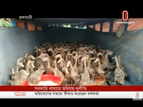 Rangamati duck farm products sold secretly (20-07-19) Courtesy: Independent TV