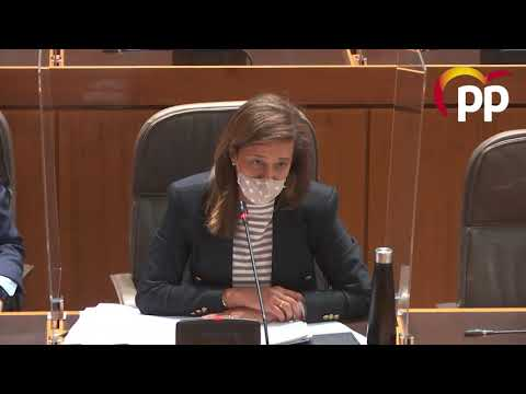 Las Cortes apoyan que el Gobierno de Aragón oriente y asesore a las entidades del tercer sector para elaborar proyectos innovadores que puedan ser financiados por fondos europeos