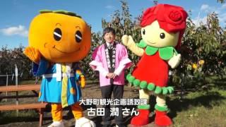 甘柿の最高峰!富有柿を収穫せよ!!編