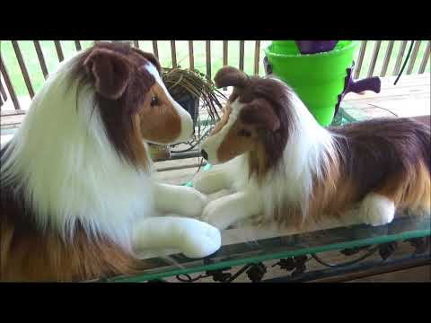 Unboxing Lassie large stuffed animal