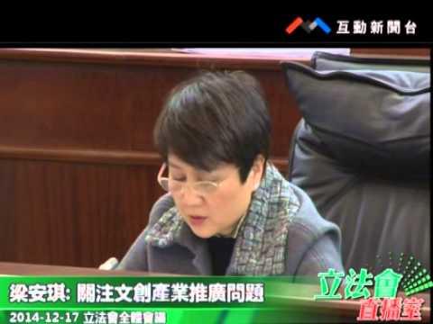 梁安琪 20141217立法會全體會議
