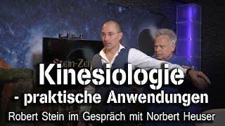 Video Kinesiologie - praktische Anwendungen - Norbert Heuser bei SteinZeit MP3, 3GP, MP4, WEBM, AVI, FLV Agustus 2018