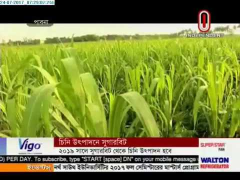 Sugar beet can be alternative of sugarcane (24-07-2017)