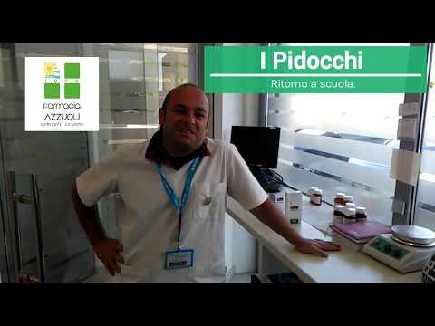 I Pidocchi