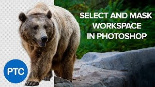 How To Use The Select And Mask Workspace In Photoshop