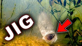 Video Underwater Bass Strikes!!! Jigs and Swimbaits - Crazy Footage!!! MP3, 3GP, MP4, WEBM, AVI, FLV Februari 2019