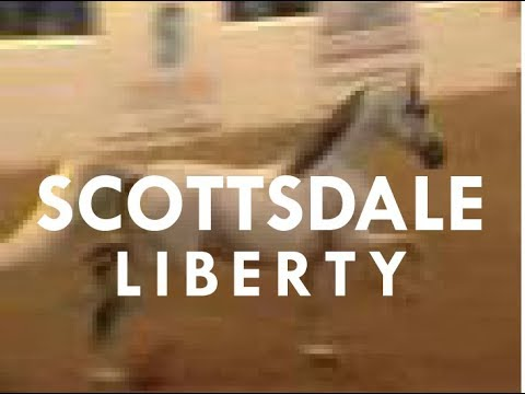 Scottsdale Arabian Horse Show Liberty Finals