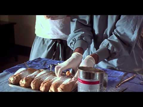 Van Wilder's cream puffs