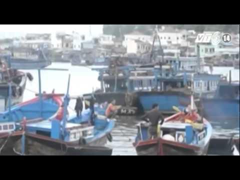 Khánh Hòa: Cấm biển từ 7h ngày 29/11