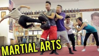 TOP 10 MARTIAL ARTS MOVES YOU SHOULD KNOW | Fung Bros
