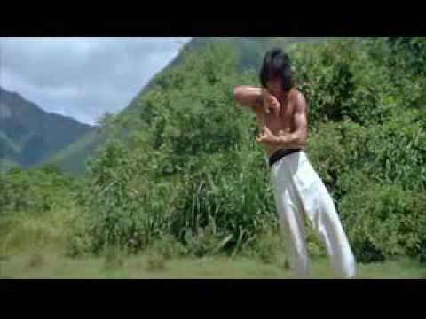 Jackie Chan Drunken Master 8 Drunken Gods
