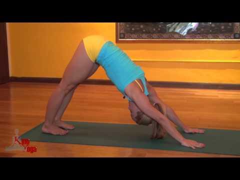 Yoga for Beginners, Kino Yoga on Miami TV Life: Episode Three
