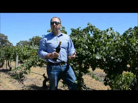 Elderton Wines Ashmead Cabernet Sauvignon video tasting note