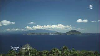Échappées belles : Guadeloupe, l'île de cœur Pour son «échappée belle» dans les Antilles, Sophie Jovillard part explorer...