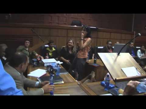 Oscar Pistorius  Prosecution has Witness.Heard Non-Stop Shouting!