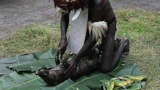 The Dani use an earth oven method of cooking pig and their staple crops such as sweet potato, banana, and cassava. They heat...
