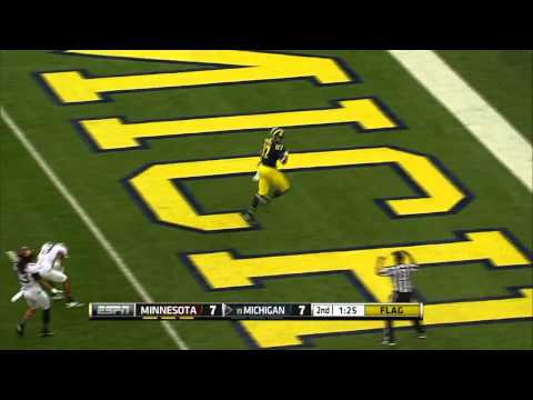 Devin Funchess 24-Yard Touchdown vs Minnesota 2013 video.