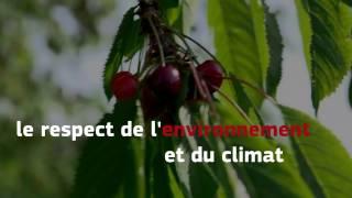 La PAC... ennemie de l'agriculture française ?