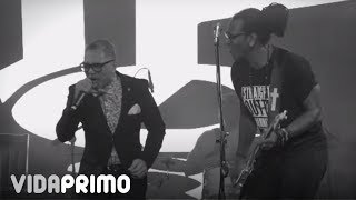 Toque Profundo Feat. Rafa Rosario – Mi Morena/Ramona Live Tq28 Aniversario