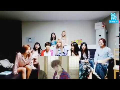 Video TWICE REACT TO CHEER UP MV download in MP3, 3GP, MP4, WEBM, AVI, FLV January 2017