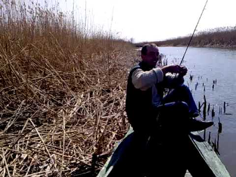 десногорск запрет на лодку